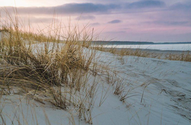 Wspaniałe wakacje nad morzem bałtyckim